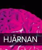 Omslagsbild för Kort om hjärnan