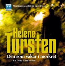 Cover for Den som vakar i mörkret