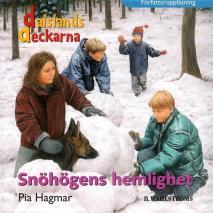 Omslagsbild för Dalslandsdeckarna 4 - Snöhögens hemlighet