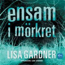 Cover for Ensam i mörkret