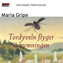 Cover for Tordyveln flyger i skymningen