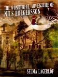 Cover for The wonderful adventure of Nils Holgersson