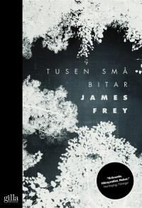 Cover for Tusen små bitar