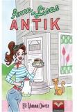 Cover for Anna-Lisas Antik