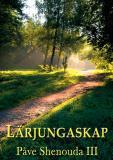 Cover for Lärjungaskap