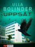 Cover for Uppsåt