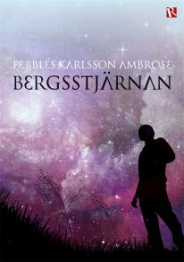 Cover for Bergsstjärnan