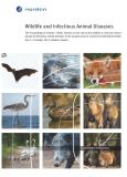 Omslagsbild för Wildlife and Infectious Animal Diseases
