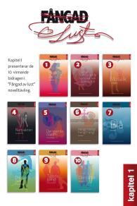Cover for Fångad av lust : antologin