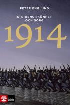 Omslagsbild för Stridens skönhet och sorg 1914