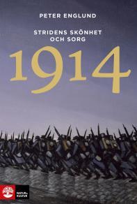 Cover for Stridens skönhet och sorg 1914