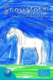 Cover for Snowstorm - A beautiful horse