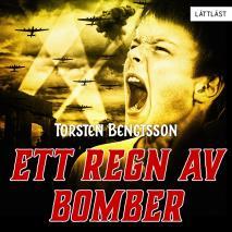Omslagsbild för Ett regn av bomber