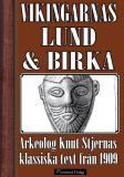 Bokomslag för Vikingatidens Lund och Birka