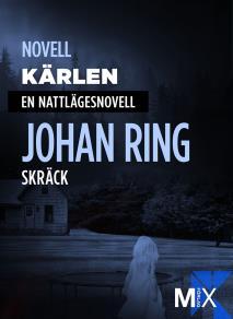 Cover for Kärlen : en nattlägesnovell