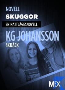 Cover for Skuggor : en nattlägesnovell