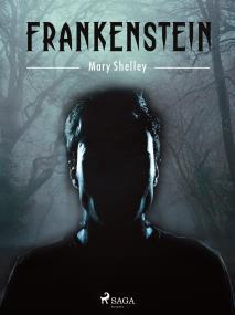 Cover for Frankenstein or The modern Prometheus