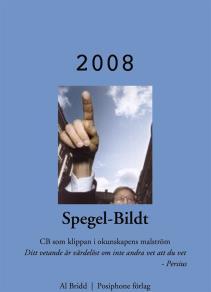 Omslagsbild för Spegel-Bildt, 2008. CB som klippan i okunskapens malström.