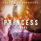 Omslagsbild för A Princess of Mars