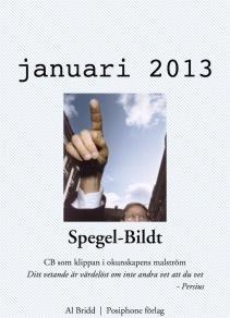 Omslagsbild för Spegel-Bildt, januari 2013. CB som klippan i okunskapens malström.