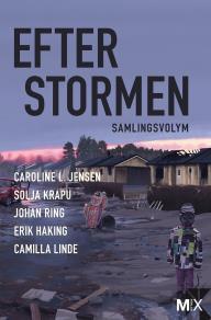 Cover for Efter stormen (utökad)