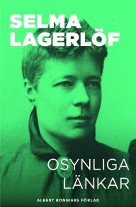 Cover for Osynliga länkar : Berättelser