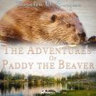 Omslagsbild för The Adventures of Paddy the Beaver
