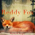 Omslagsbild för The Adventures of Reddy Fox