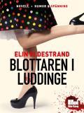 Cover for Blottaren i Luddinge