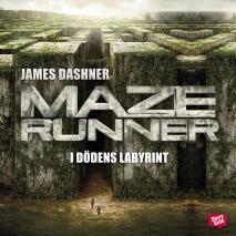 Omslagsbild för Maze runner: i dödens labyrint