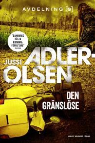 Cover for Den gränslöse