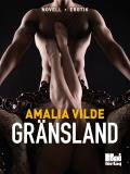 Cover for Gränsland
