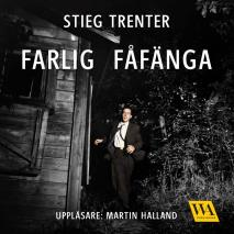 Cover for Farlig fåfänga