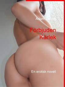 Omslagsbild för Förbjuden Kärlek: En erotisk novell