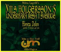 Cover for Nils Holgerssons underbara resa 1