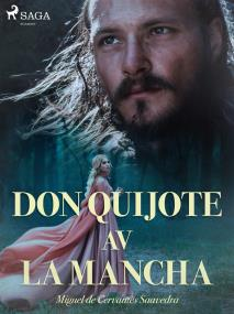 Cover for Don Quijote av la Mancha