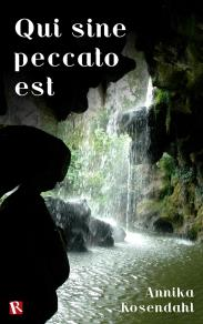 Omslagsbild för Qui sine peccato est