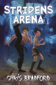Omslagsbild för Stridens arena