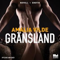 Cover for Gränsland