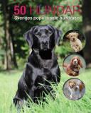 Omslagsbild för 50 hundar : Sveriges populäraste hundraser