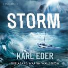 Bokomslag för Storm