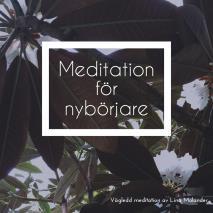 Omslagsbild för Meditation för nybörjare