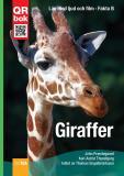 Omslagsbild för Giraffer - Fakta A