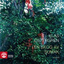 Cover for I en skog av sumak