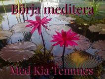 Omslagsbild för Börja Meditera