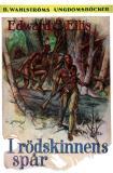 Omslagsbild för I rödskinnens spår