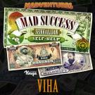 Cover for Mad Success - Seikkailijan self help 3 VIHA