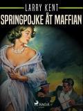 Bokomslag för Springpojke åt maffian