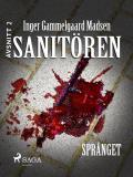 Omslagsbild för Sanitören 2: Språnget