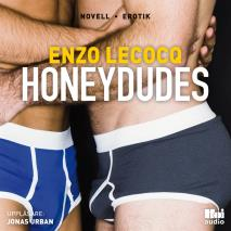 Omslagsbild för Honeydudes